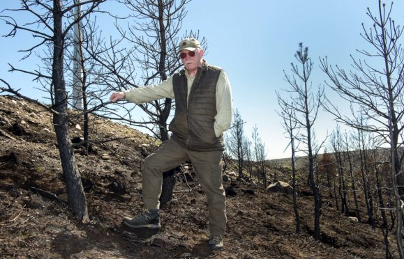 Bill Muircroft, Deer Manager at Altyre Estate inspects the damage caused by wildfires to the trees.