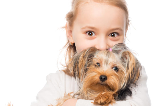 Research reveals benefits of having pets