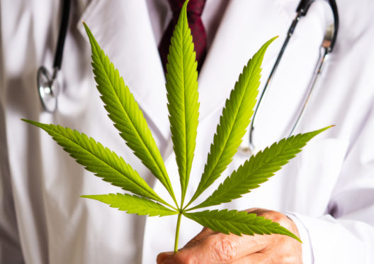Doctors are prescribing CBD for an increasing number of issues