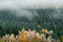 Cairngorms National Park.