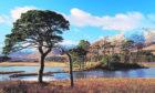 Loch Tulla and Stob Ghabhar, Bridge of Orchy - near, Argyll, UK, Scotland